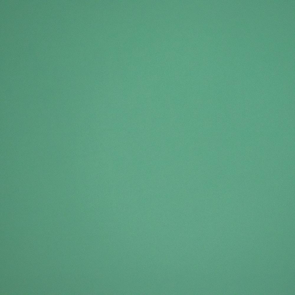 cuir de vachette lisse vert d eau
